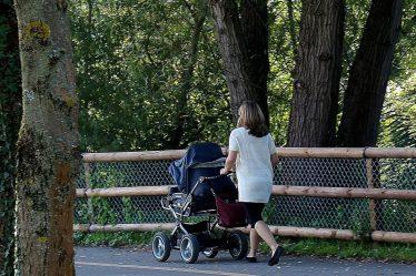 Pokud by ale žena měla nárok na mateřskou na druhé dítě ještě během rodičovské dovolené, nebo do 4 roků věku toho prvního dítěte, pak by se mohla mateřská počítat ze stejného příjmu, jako u prvního dítěte.